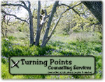 Turning Points Counselling Services